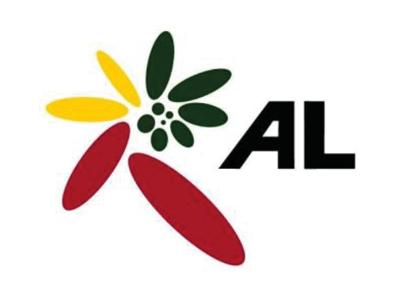 Amalgamated Lifts Ltd